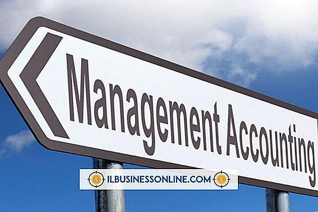 Grundlagen des Management Accounting in Business