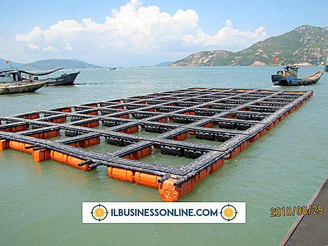 Kategori forretningsmodeller og organisationsstruktur: Fish Cage Farming
