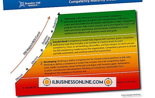 비즈니스 모델 및 조직 구조 - 역량 모델 유형