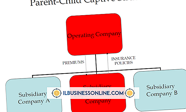एक कैप्टिव संगठन क्या है?