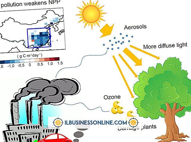 Auswirkungen von Schadstoffen auf die Pflanzenstruktur