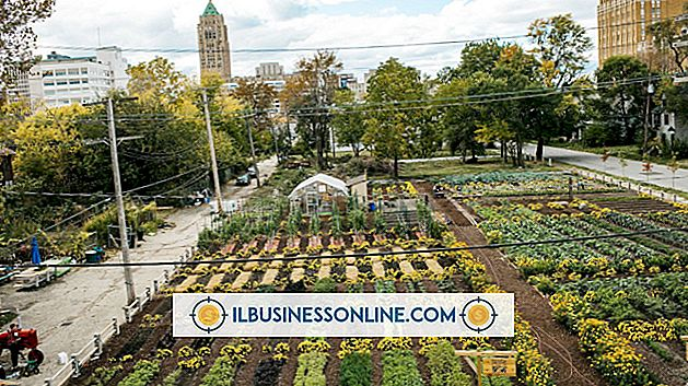Urban Agriculture Business Development