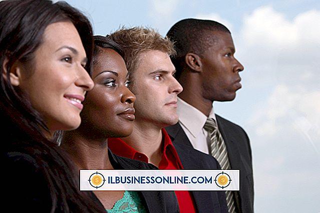 İşletmelerde Çeşitlilik Örnekleri