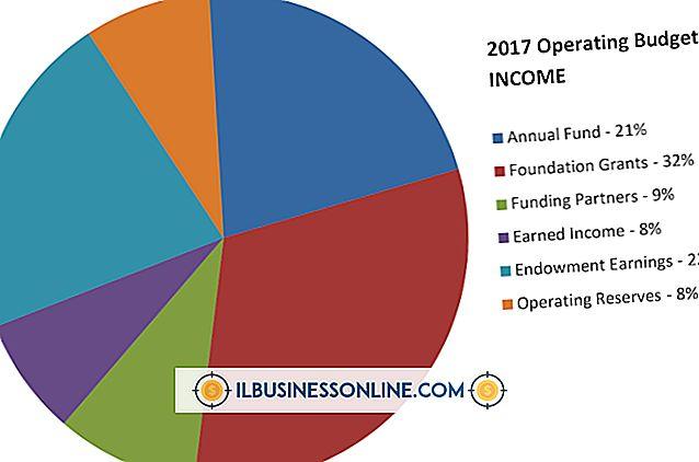 Vad tjänar intäkter i en driftsbudget?