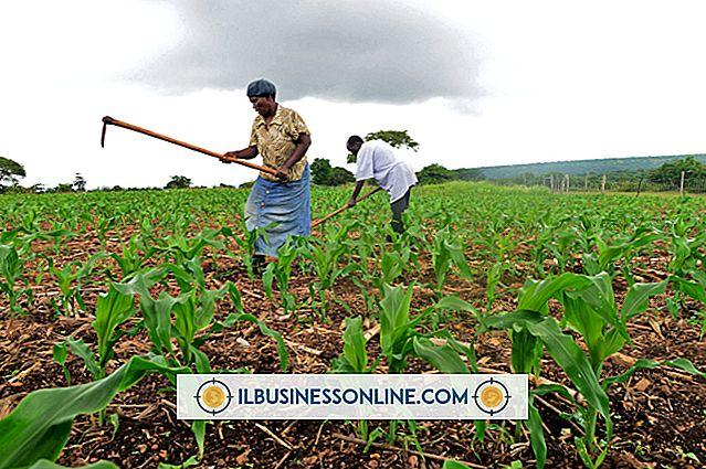 Kinh tế của nông dân nhỏ