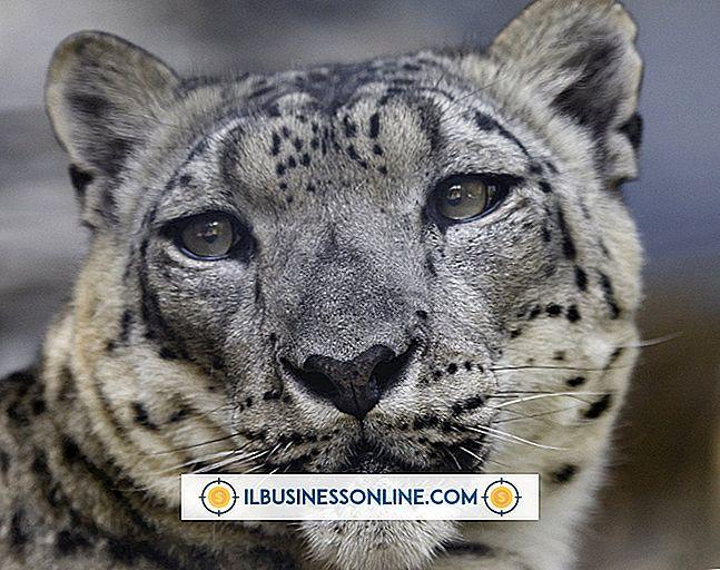 Kategorie Humanressourcen: Adobe Acrobat kann nicht in Snow Leopard verwendet werden