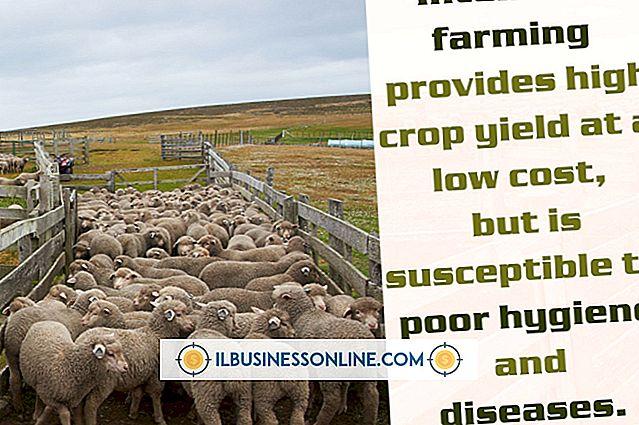 Kategori mengelola karyawan: Kerugian dari Bisnis Peternakan Sapi