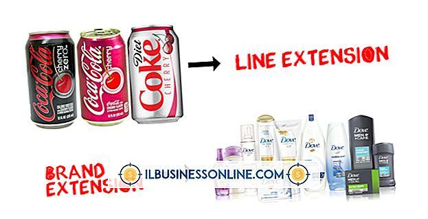 범주 사업 운영: 제품 라인 확장의 예